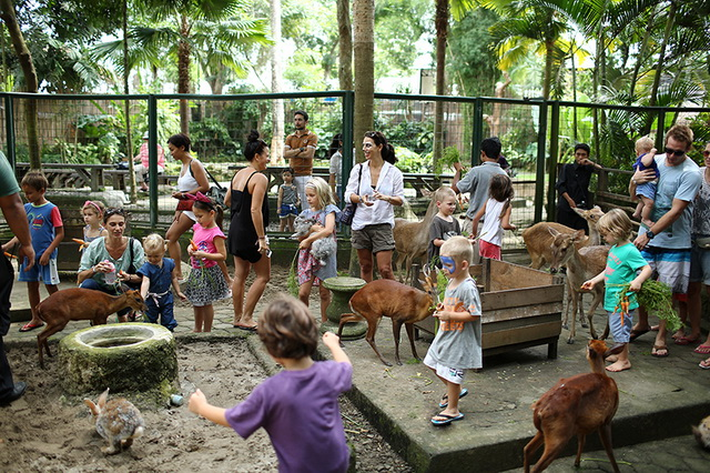 Visit the Zoo Day