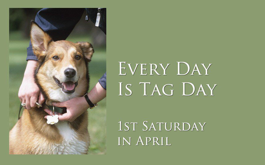Every Day is Tag Day