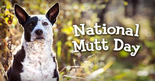 Mutt's Day