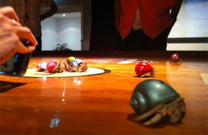 National Champion Crab Races Day