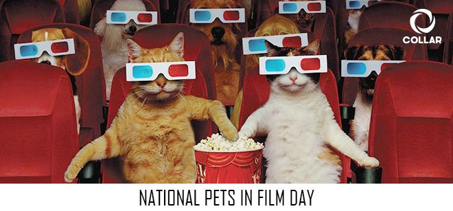 National Pets in Film Day